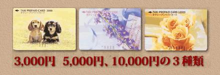 プリペイドカード・日新交通