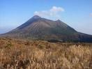 高千穂峰のススキ
