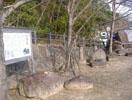 カンカン石