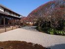 萬福寺桃山式庭園