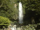 裏見の滝自然花苑
