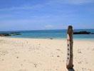 赤崎海岸画像