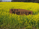西郷川花園