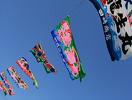串木野市まぐろフェスティバル